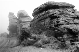 3 Mt. Lemmon, AZ